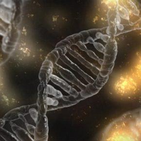 子どもが欲しいという自己実現のために遺伝子操作までするのは間違い